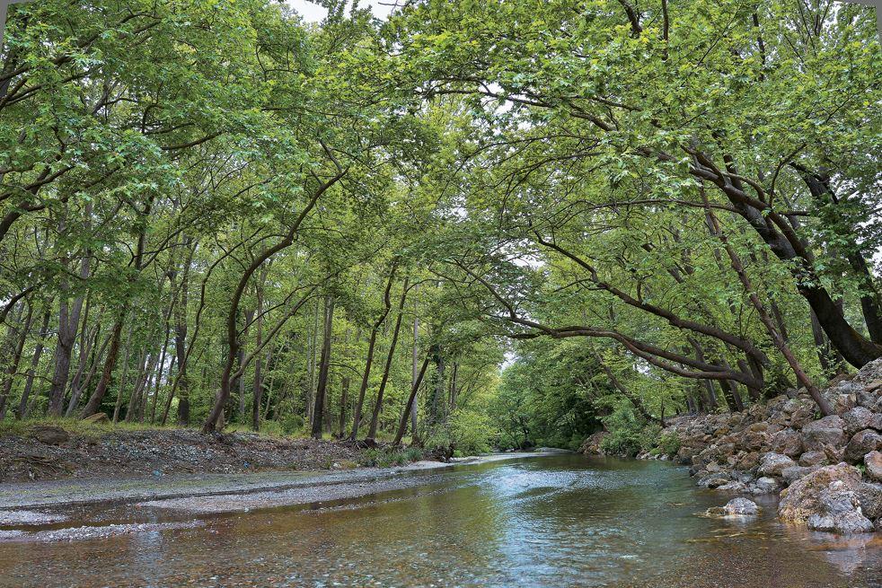 Ποτάμι. Νότια Εύβοια_